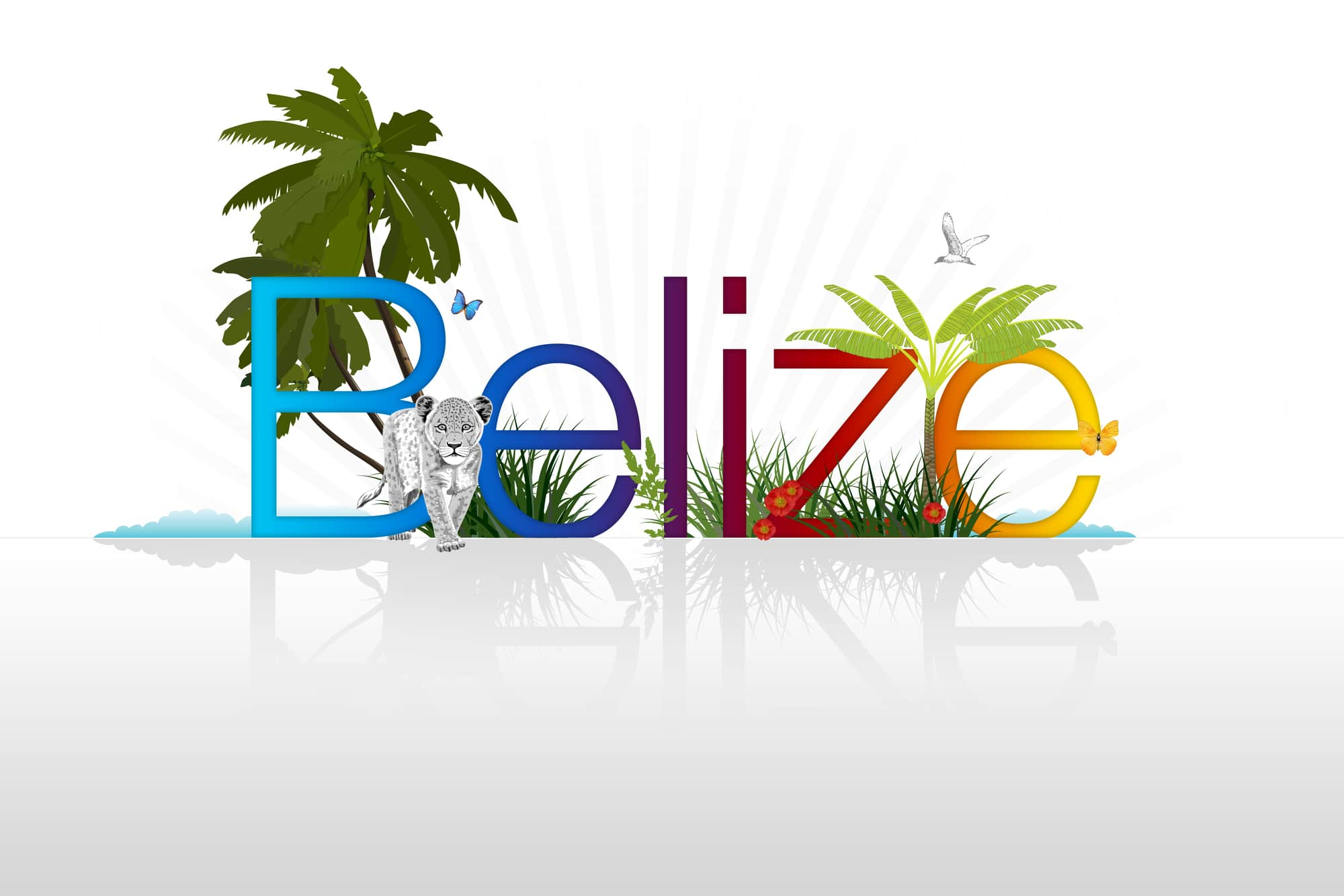 OFFSHORE COMPANY FORMATION IN BELIZE